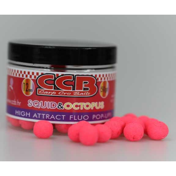 CCB fluo popup boile lignja hobotnica