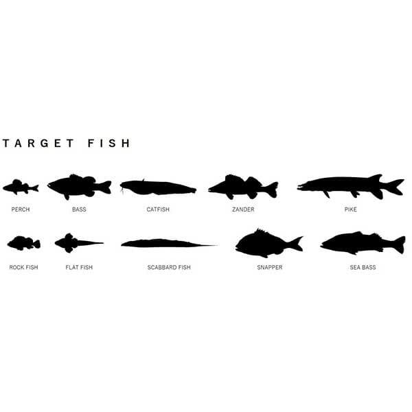 Adusta penta shad ciljane ribe